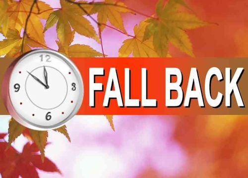 Fall back web