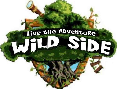 New Wild Side logo 2011 web